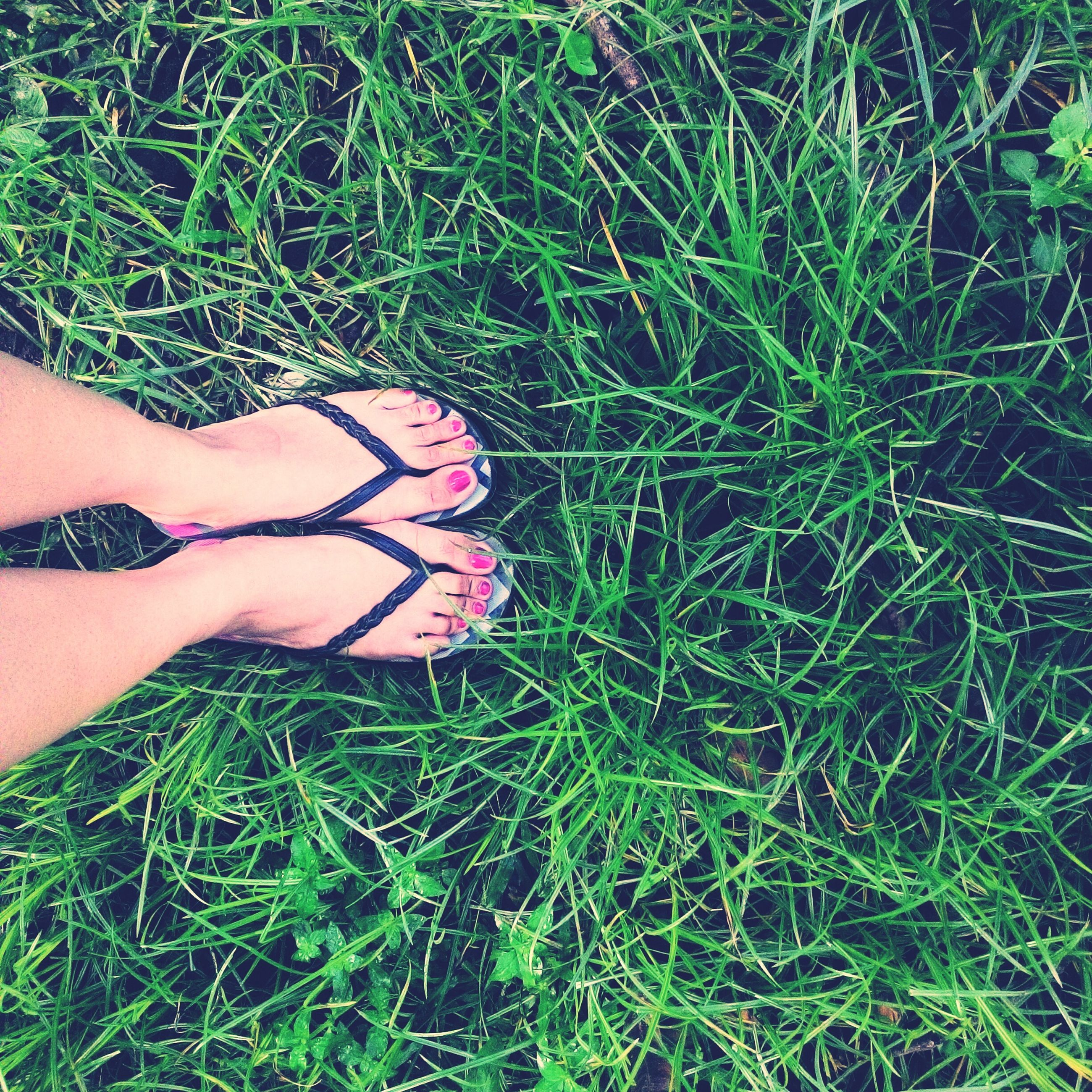 grass, low section, person, grassy, lifestyles, field, high angle view, leisure activity, shoe, standing, green color, human foot, personal perspective, relaxation, footwear, outdoors