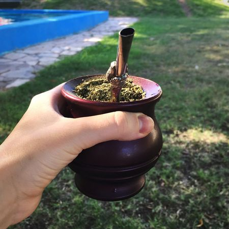 Mate. Human Hand Mate Outdoors Day Freshness Nature Close-up Healthy Eating Food And Drink Holding Human Body Part Food Swimming Pool Mate Drink Calabaza Yerba Mate Yerbamate Yerba Weekend Sunny Afternoon Sunny Day Argentina Argentina Photography Arg Argentinaphotography