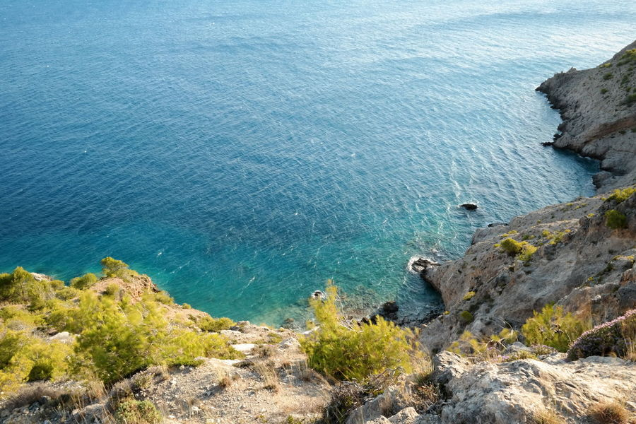 Blue Sea Looking Down Plants Seashore Beauty In Nature Blue Sea And Clear Water Cliff Day High Angle View Nature No People Outdoors Rock - Object Rock Formation Rocky Coastline Scenics Sea Tranquil Scene Tranquility Water Go Higher