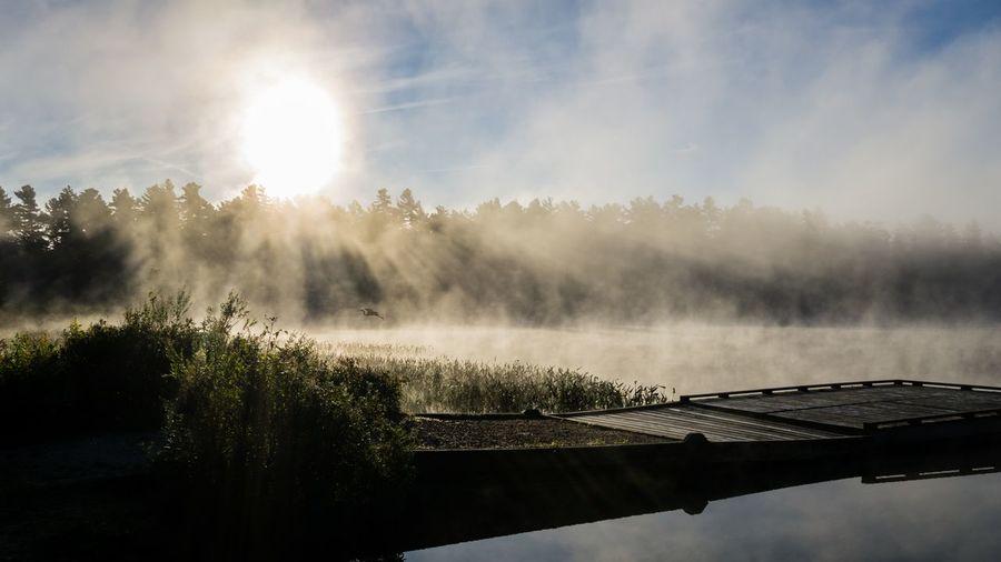 Fog Lake No