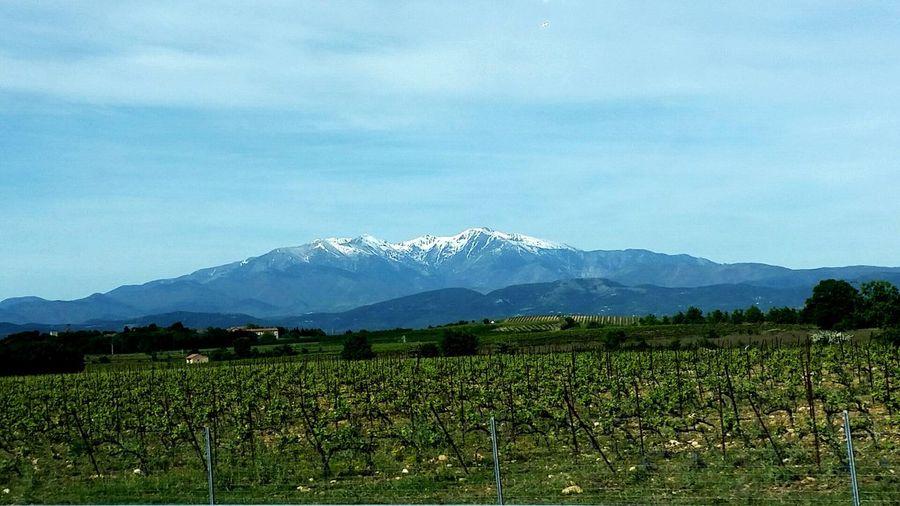 Landscape PyrénéesAtlantiques