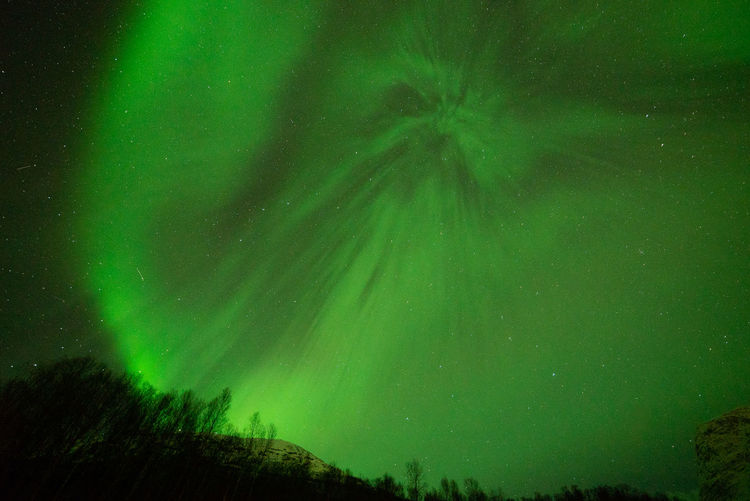 Aurora Borealis in Norway Geomagnetic Disturbance Kp-index Northern Lights Polar Lights Astronomy Aurora Polaris Beauty In Nature Geomagnetic Storm Green Color Idyllic Land Low Angle View Nature Night Outdoors Plant Scenics - Nature Sky Solar Storm Space Star - Space Tranquil Scene Tranquility Tree Zulkefli