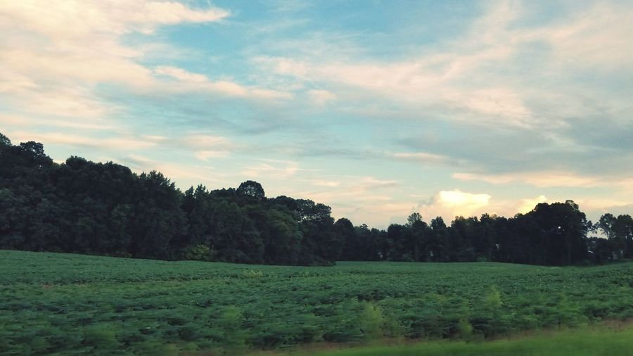 Green Color Backgrounds Country Clouds And Sky Sky Landscape