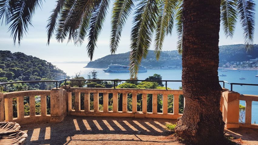 Tree Palm Tree Sea Sky Water Tree Trunk Outdoors Vacations Tranquil Scene Tourism Villa France French Riviera