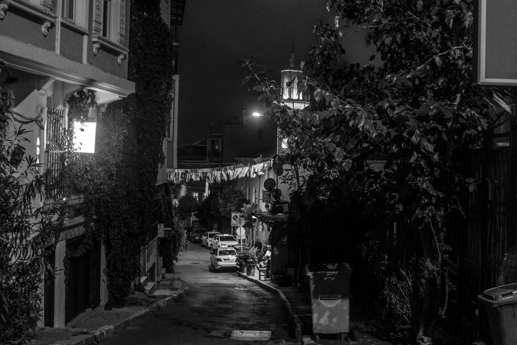 Night Building Exterior Illuminated Architecture Built Structure Plant Lighting Equipment Street City Direction The Way Forward Street Light No People Tree Building Residential District Nature Outdoors Footpath Narrow Alley Electric Lamp Dark