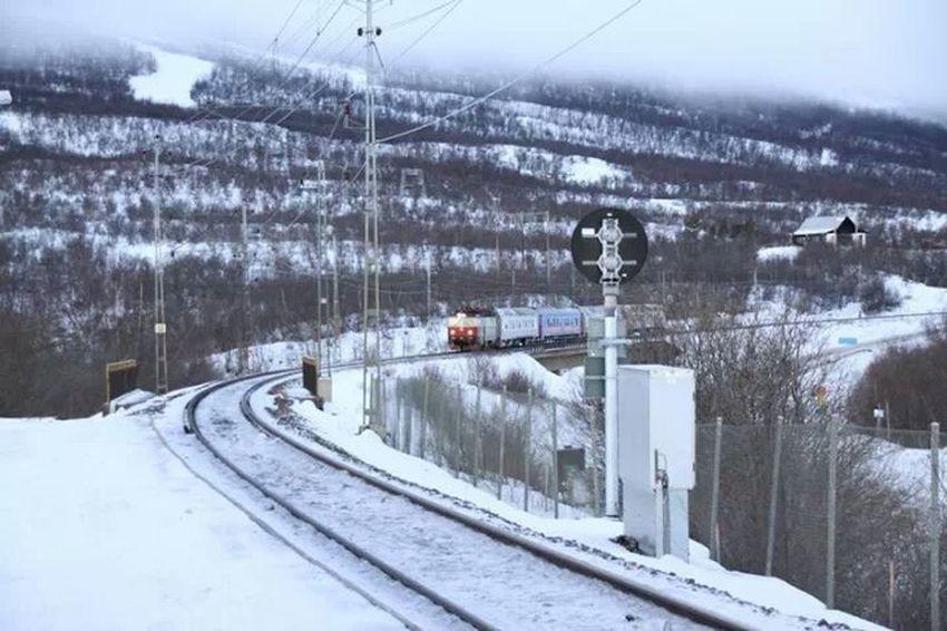 Sweden Abisko 撮り鉄 レイルマン 1日1鉄!! 某先生のパクりですが。。。レイルpman...列車が来た感動で構図やフォーカスが甘いですがご容赦下さい(>.<)