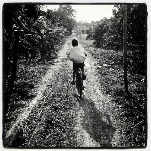 bikecycling Bike Cycling Road Home Life Chrildren Black & White Street