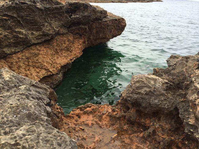 Sea Nature Walking Around Rock IPhoneography Beach Photography Holiday Enjoying Nature