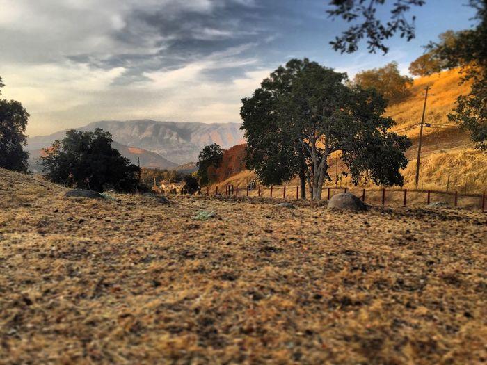 California Sierra Nevada Foothills