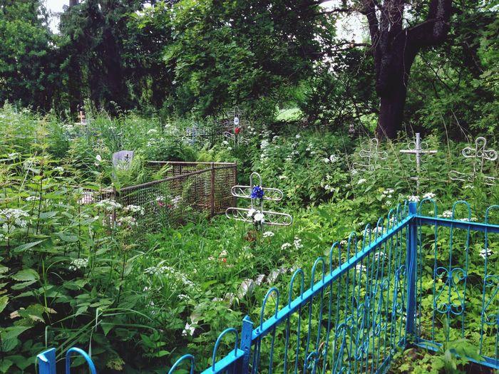 Russia Old Forgotten Neglected Cemetery NoHope Tverskaya Oblast россия встает с колен