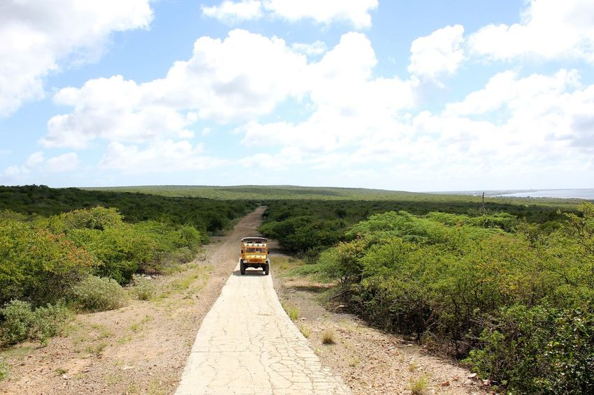Discover Bonaire with Bigfoot Tours 4x4 Travel 4x4 Trucks 4x4 Unimog Beauty In Nature Bigfoot Tours Bonaire Cloud - Sky Day Grass Green Color Growth Landscape Nature No People Outdoors Road Scenics Sky The Way Forward Tranquil Scene Tranquility Tree Unimog