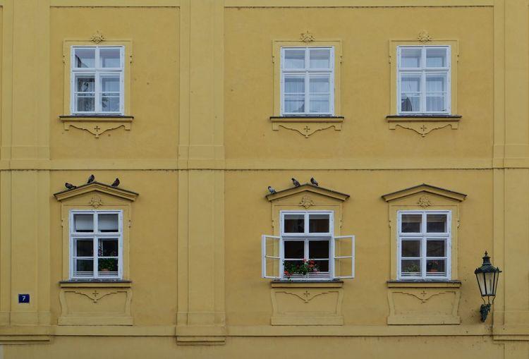 Facade of building with windows