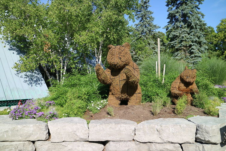 Animal Carvings Bears Cactus Day Green Color Growth Nature No People Outdoors Plant Sky Statues Sunlight Toronto Zoo Tree