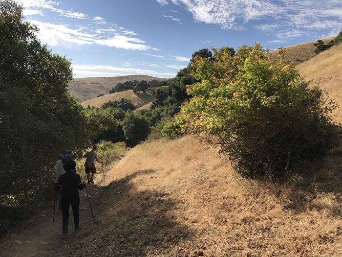 Adult Adventure Beauty In Nature Day Garin Regional Park Hiking Landscape Leisure Activity Lifestyles Men Mountain Nature Outdoors People Real People Rear View Scenics Sky Sunlight Tree Walking Women