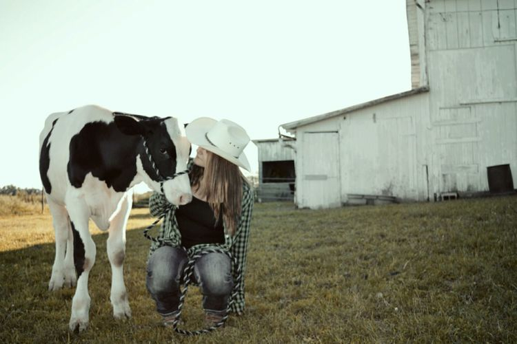 Grass Animal Themes Domestic Animals Livestock Herbivorous Domestic Cattle Farm Animal Farm Cowgrils (: Young Women Cowgirl Boots Cowgirls (: ❤️ Cowgirl Cowgirl Up Cowgirl Dreaming Cowgirl Love Outdoors Young Adult