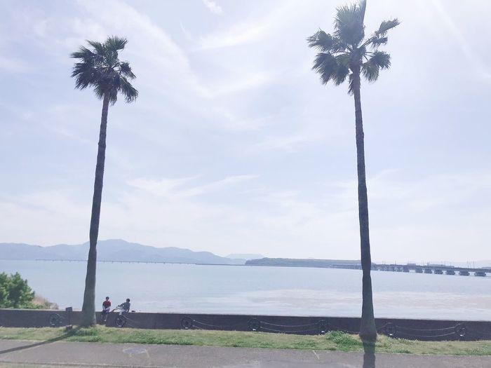 長崎空港 森園公園 Sky