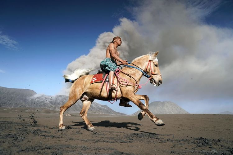 Full length of young man riding horse on sand against sky