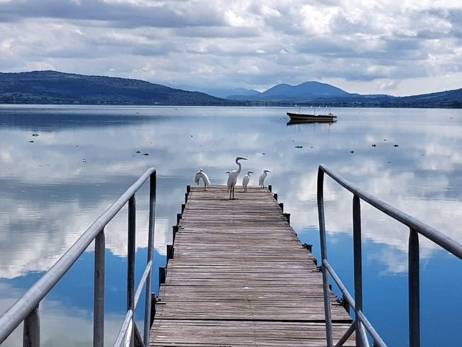 Cuexcomatitlán Pier Water Outdoors Tranquility Wood - Material Jetty Lake Scenics Tranquil Scene Day Mountain Nature Sky Beauty In Nature No People Cloud - Sky Blue Wood Paneling Landscape Bird First Eyeem Photo