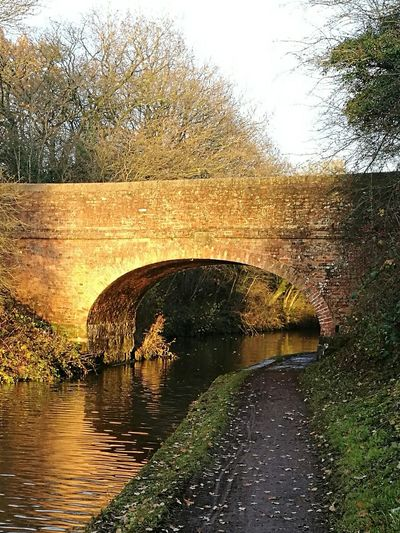 Winter sunshine Canal Towpath Golden Tardebigge Tranquil