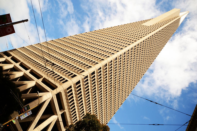 Architecture Blue Sky Building Exterior Built Structure City Cityscapes Low Angle View No People Office Building Pyramid San Francisco Sky Skyscraper Tall - High Tourism Tower Transamerica Pyramid Transamerica Pyramid Building
