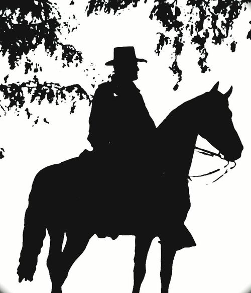Silhouettes Man On Horseback Blackandwhite Photography Black And White Black & White Blackandwhite