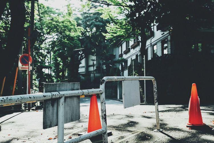 After No People Quiet Moments Sunny Day Sunshine Traffic Cone Tree VSCO Walk Yamate Yokohama