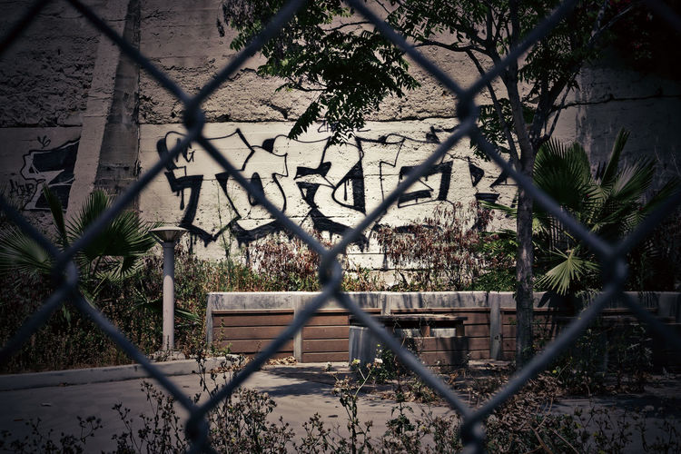 Tagged out. Architecture Branch Building Exterior Built Structure Chainlink Fence Day Fence Graffiti Growth Nature No People Outdoors Plant Protection Street Tag Tree Urban Urbex Adapted To The City The Street Photographer - 2017 EyeEm Awards The Creative - 2019 EyeEm Awards