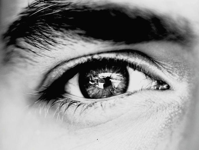First Eyeem Photo EyeEm EyeEm Gallery Faces Of EyeEm Macro Bysinaneksi EyeEm Best Shots Details