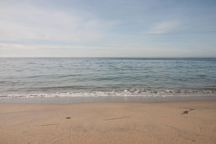 Shoreline Shore