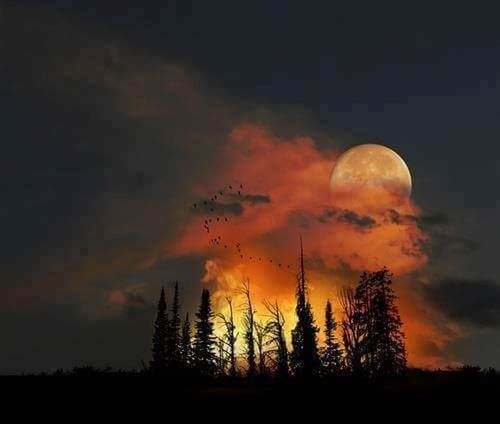 Colors Tonight Shedows Demons Full Moon Beutiful :)