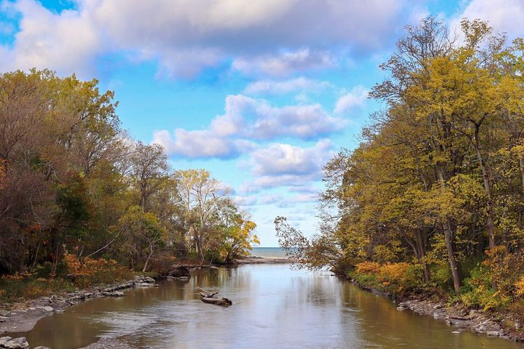 River amidst trees against sky during autumn