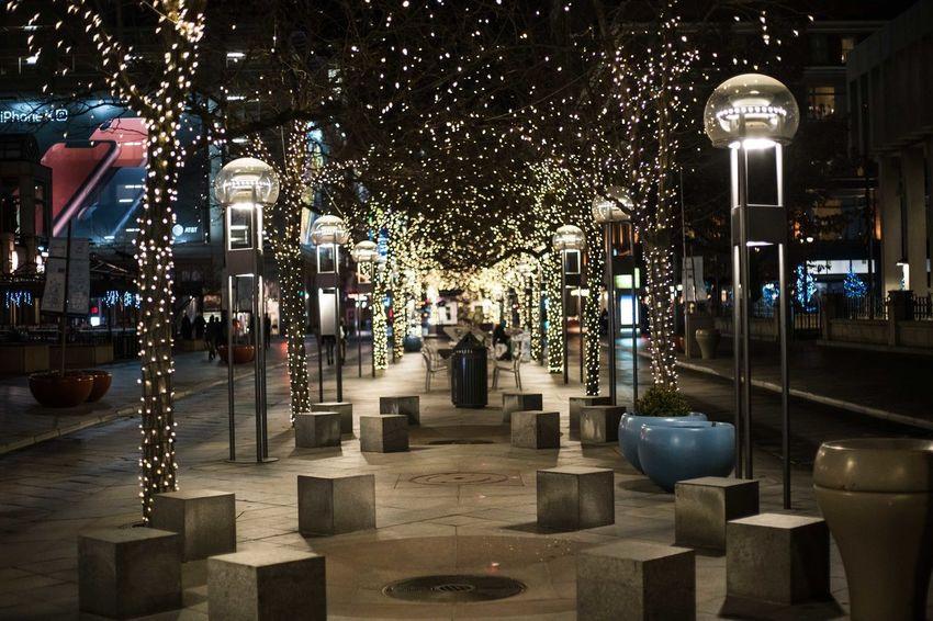 Illuminated Night Architecture Built Structure Tree Building Exterior City Decoration Holidays Christmas