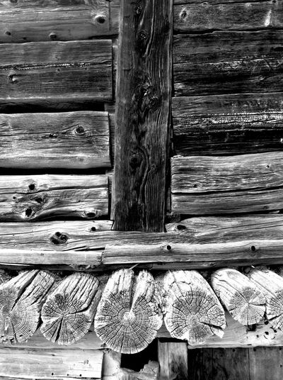 Wood Dolomites, Italy Walking Around zoldo