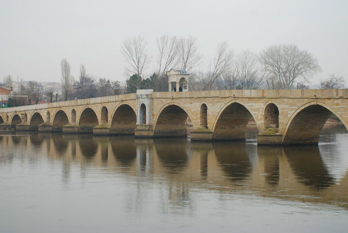 Animals Bridge Edirne Eye4photography  EyeEm Best Shots EyeEm Nature Lover Goose Meriç River Riverscape