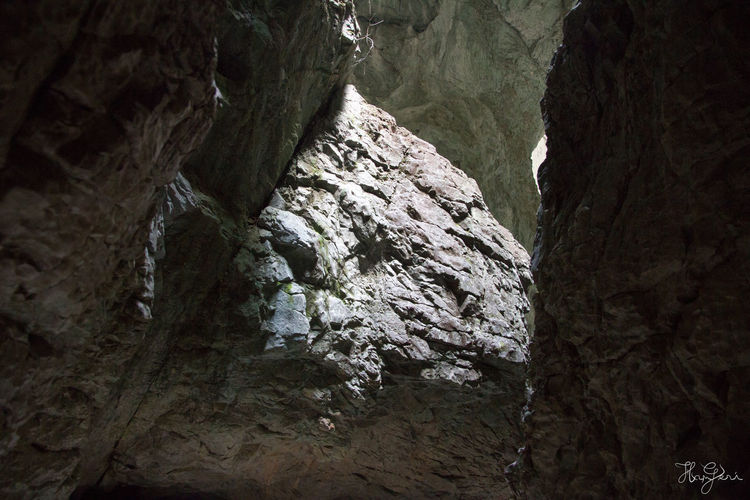 Padis, Transylvania Hiking Hungary Padiș Romania Transylvania Beauty In Nature Cave Close-up Day Geology Hungarian Indoors  Mountain Nature No People Physical Geography Rock - Object Rock Face Rock Formation Rough Scenics Textured  Tranquility