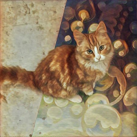 Cat Composition Cat Cats Of EyeEm Cat Lovers Cats 🐱 Catsagram Catsofinstagram Catslife Catlover Domestic Cat Ginger Cat Domestic Animals Pets One Animal Catoftheday Cat Photography Catstagram Cat Watching ArtWork Art Photography Prisma Prisma Art Prisma App Prismacolor Prismaart