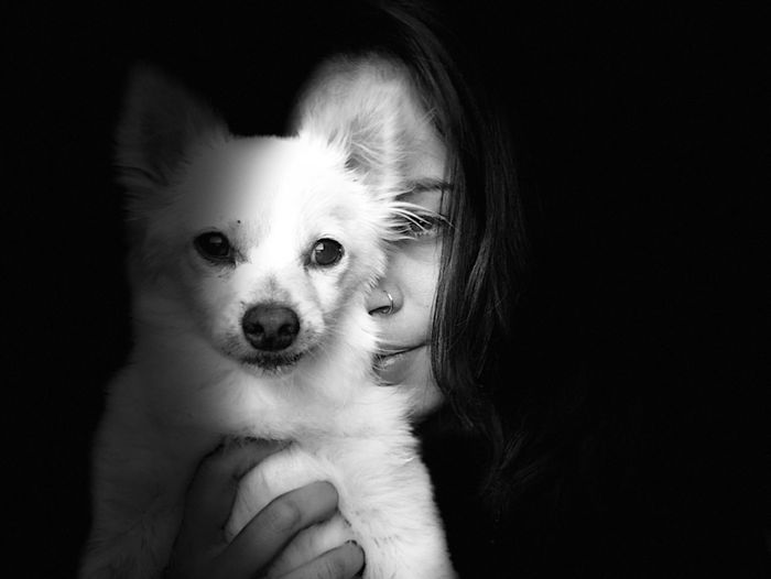 Close-Up Portrait Of Young Woman Holding Dog Against Black Background