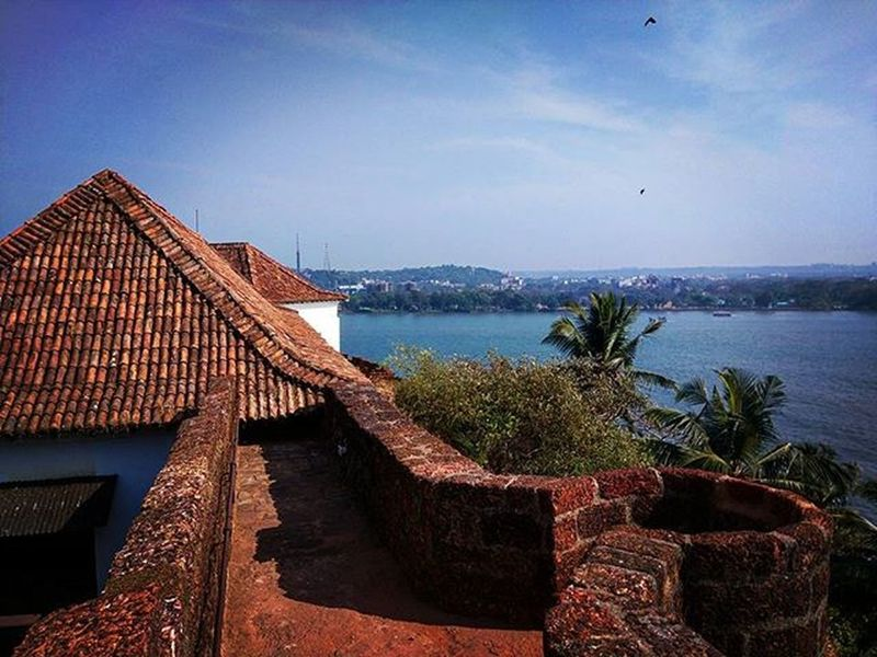 Goa Goatourism Jbclickz
