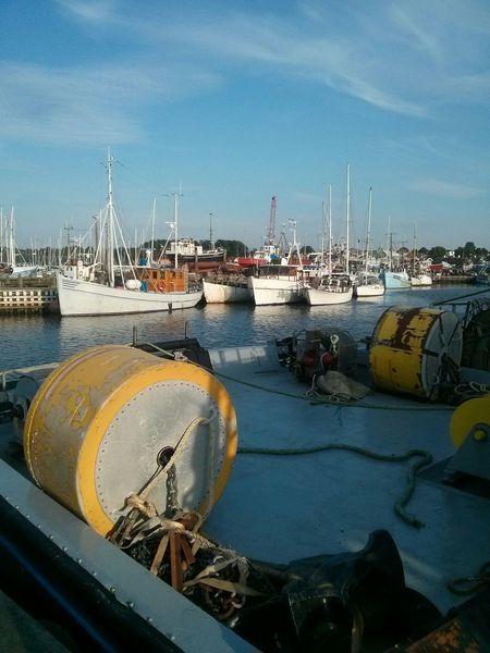 Port Boats Harbour Haven Fisherman Fishermen Fishing Sea Seaside Sun Sunshine Spring Denmark Gilleleje