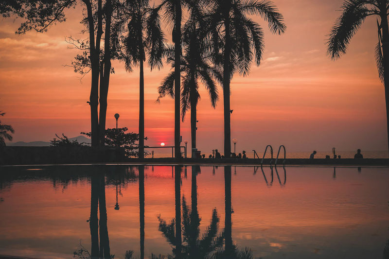 Silhouette palm trees by swimming pool against sea during sunset