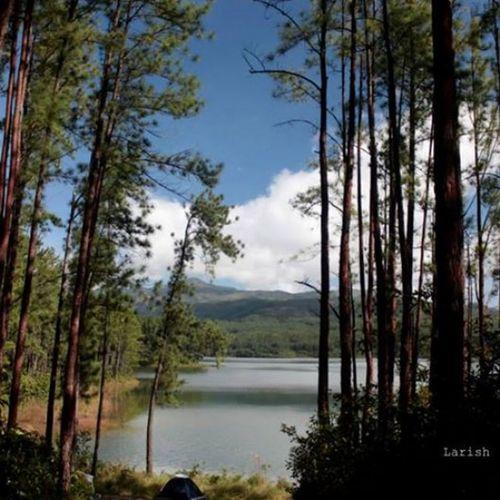 Landscape EyeEm Nature Lover Panamá Lake