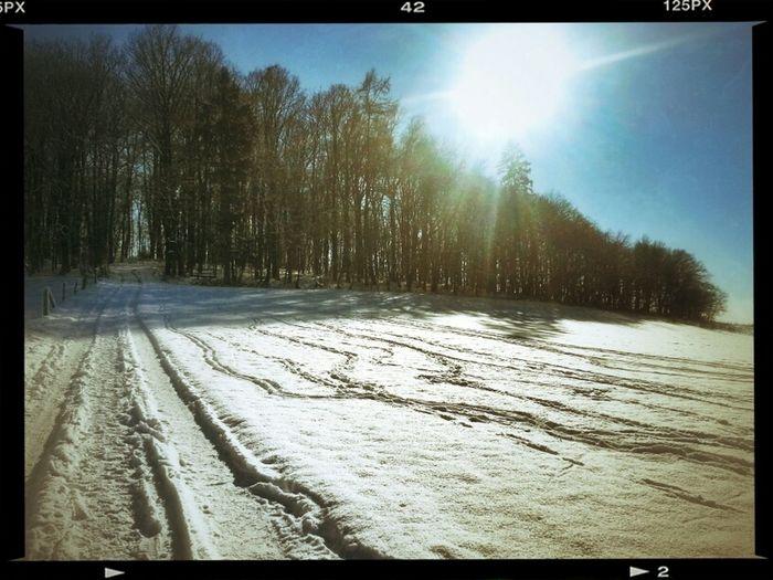 Walking Around Sun Landscape Enjoying The Sun Winter
