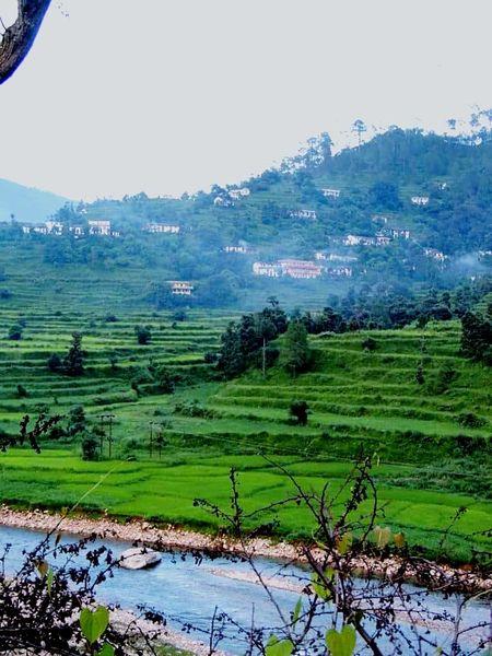 My Village Kumaon India Lush Green Mountains