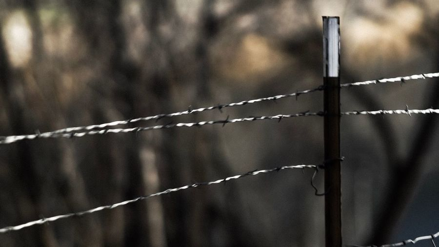 Keeping Something Out Wild West Boundary Fence Barrier Metal No People Protection Safety Security Wire Outdoors Focus On Foreground Close-up Barbed Wire Razor Wire