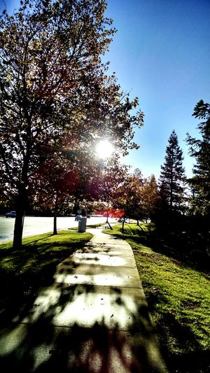 Radiator problems, $200. The walk home, PRICELESS Carproblems Walking Home Dayafterthestorm