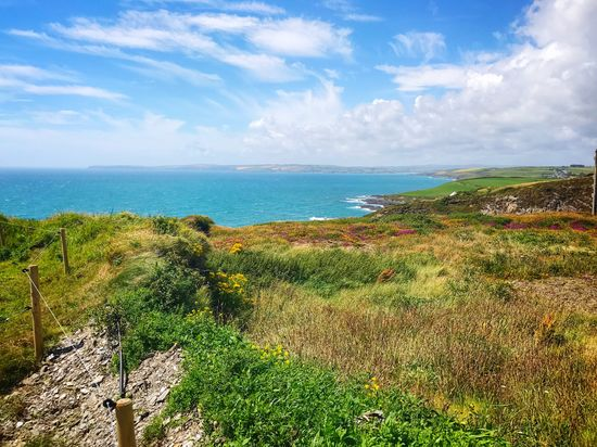 EyeEm Selects Scenics Sea Beauty In Nature Tranquil Scene Nature Sky Tranquility Horizon Over Water Grass Cloud - Sky Water Day Outdoors Non-urban Scene No People Landscape Green Color Plant Growth Wild Atlantic Way Ireland Clonakilty