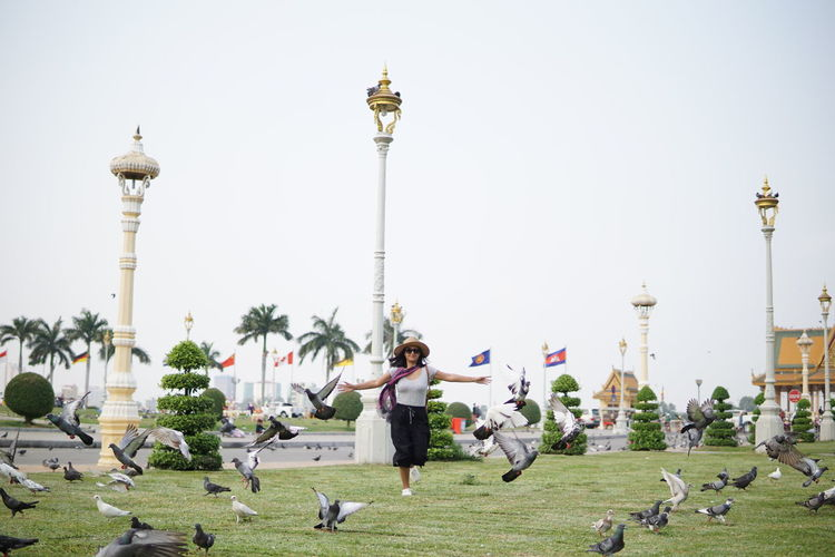 Playful woman chasing pigeons at park against clear sky