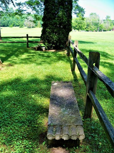Stone Bench Field Indiana Barrier Bench Boundary Country Life Day Fence Fence Post Field Grass Green Color Growth Land Landscape Nature No People Outdoors Plain Plant Stone Bench Tranquil Scene Tranquility Tree Wood - Material