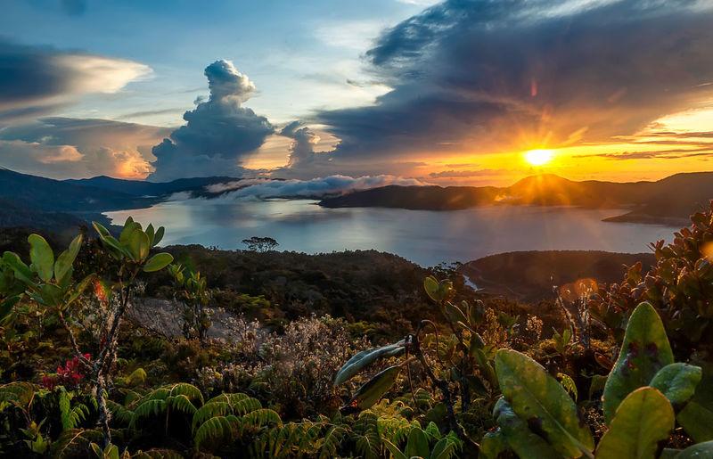 Sunrise at Anggi Gida Lake, Pegaf , West Papua, Indonesia Lake Landscape Tree Beauty Cloud - Sky Sky Outdoors Mountain Amazingearthgallery Arrival Natural Parkland Urban Skyline Nature Travel Photography INDONESIA Papua Barat Sunrise_sunsets_aroundworld First Eyeem Photo