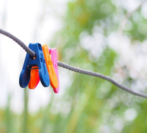 Close-up of multi colored hanging on rope against trees